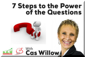 cas_willow_7_steps_to_power_of_the_questions